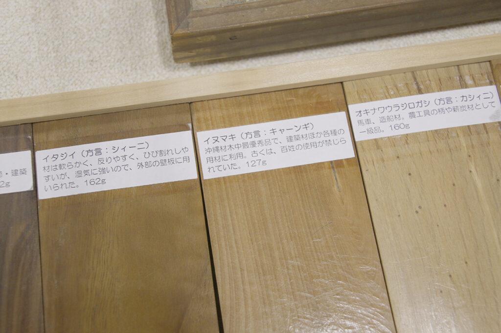 石垣市立八重山博物館のイヌマキ(キャーンギ)の説明